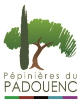 logo padouenc